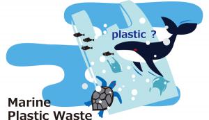 Marine Plastic Waste